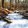 Frozen Stream 2015 by Derek Gedney