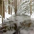 Frozen Stream by Gordon Cain