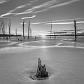 Frozen Sunrise Bw by Michael Ver Sprill