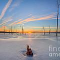 Frozen Sunrise V2 by Michael Ver Sprill