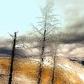 Frozen Time II by Isartdesign By Isabella Schnittger