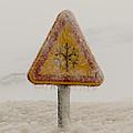 Frozen Traffic Sign by Alexandre Martins