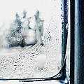 Frozen Windowpane by Margie Hurwich