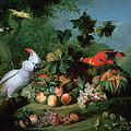 Fruit And Birds by Jakob Bogdani or Bogdany