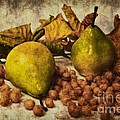Autumn Still Life by Angela Doelling AD DESIGN Photo and PhotoArt