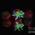 Fruits by Maja Sokolowska