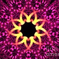 Fuchsia Flowers by Kim Sy Ok