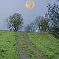 Full Moon And A Country Road by Bill Cannon