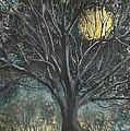 Full Moon by Douglas Beatenhead