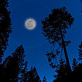 Full Moon In Yosemite by Ron Pate
