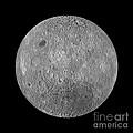 Full Moon by Jon Neidert