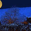 Full Moon Night by Augusta Stylianou