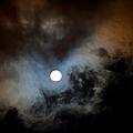 Full Moon Night by Jenny Rainbow