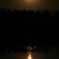Full Moon On Piprell Lake by Andrea Lawrence