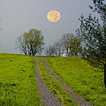 Full Moon On The Rise by Bill Cannon