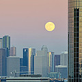 Full Moon Over Downtown Houston Skyline by Silvio Ligutti