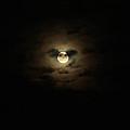 Full Moon Over Long Island by John Telfer