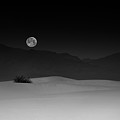 Full Moon Over White Sands by Lydia Jacobs