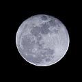 Full Moon by Pamela Walton