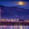 Full Moon Rising #2 by Shauna Milton