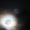 Full Taurus Moon by Diana Haronis