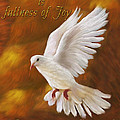 Fullness Of Joy by Constance Woods