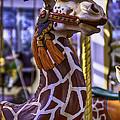 Fun Giraffe Carousel Ride by Garry Gay