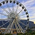 Fun In Cape Town by Maria Coulson