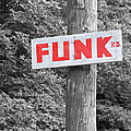 Funk Road by Brooke T Ryan