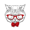 Funny Cat In A Tie And Glasses. Vector by Vitaly Grin