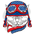 Funny Cat In The Hat And Scarf. Vector by Vitaly Grin