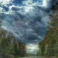 Furnace Branch Road by Toni Martsoukos