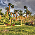 Furnace Creek Inn by Heidi Smith