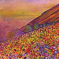 Furthur At Redrocks 2011 by David Sockrider