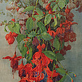 Fushia And Snapdragon In A Vase by William Jordan