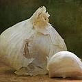 G Is For Garlic by Juli Scalzi