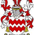 Gaine Coat Of Arms Irish by Heraldry