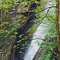 Gainfeld Waterfall In Spring Austria by Ralph Brunner