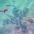 Galapagos Islands From Under Water by Angela Stanton