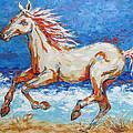 Galloping Horse On Beach by Jyotika Shroff
