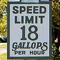 Gallops Per Hour by Cynthia Guinn