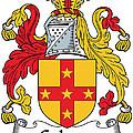 Galwey Coat Of Arms Irish by Heraldry