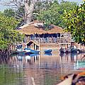 Gambian Fishing Village by Tony Murtagh