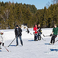 Game Of Ice Hockey On A Frozen Pond  by Les Palenik