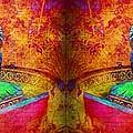 Ganesh by Lilliana Mendez