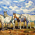 Gang Of Four by Jan Finn-Duffy
