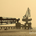 Gantry Crane In Port by James Brunker