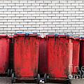 Garbage Bins by Luis Alvarenga