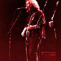 Concert  - Grateful Dead #33 by Susan Carella