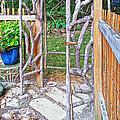 Garden At Cheryl's by Cheryl Birkhead